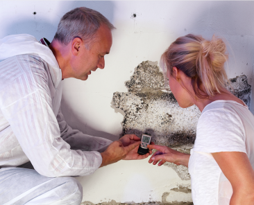 Mould Biotoin Illness can cause a range of symptoms including fatigue, brain fog, headaches, and neuralgia